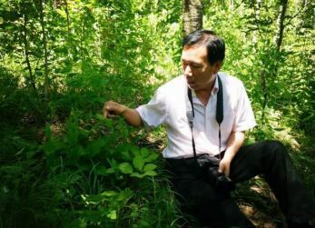 丰宁燕山大峡谷发现国家一级稀有保护植物山西杓兰